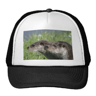 Otters Hat