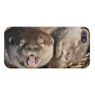 Otters iPhone 5/5S Covers