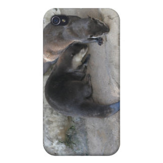 Otters Cases For iPhone 4