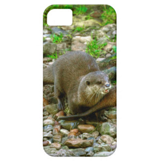 Otters making their way to the water iPhone 5 covers