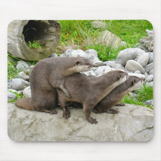 Otters Mouse Mat