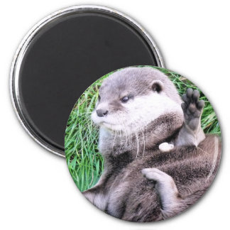 OTTERS REFRIGERATOR MAGNET