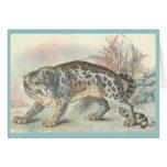 Ounce (Snow Leopard) Cards