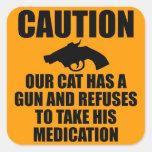Our Cat Has a Gun