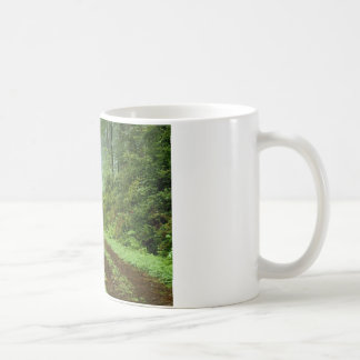 Our Clothing, our earth, and our plants Mugs