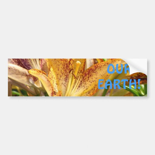 OUR EARTH! bumper stickers Golden Lily Flowers