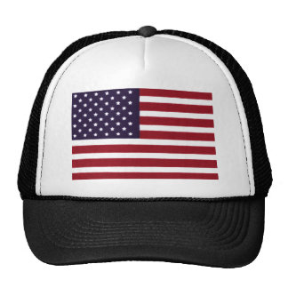 Our Flag MAIN PRINT.jpg Cap
