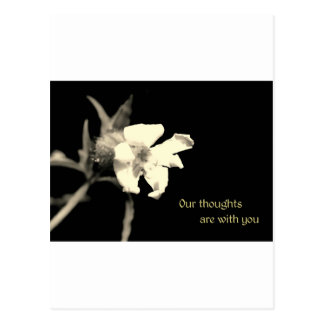 Our thoughts are with you post card