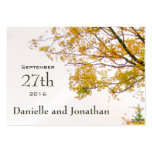 Our Tree, Large Size Fall Wedding Favour Tags Pack Of Chubby Business Cards