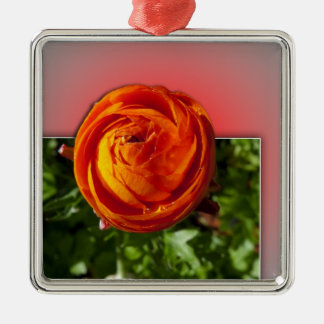 Out of Bounds Red Flower with red background. Christmas Ornament