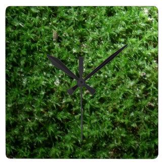 Outdoor Botanical Green Ground Moss Nature Clock
