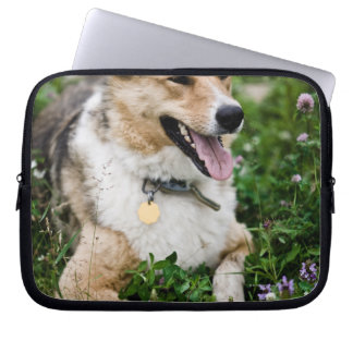 Outdoor portrait of dog lying down in meadow laptop sleeve