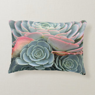 Outdoor Succulent Pillow, Blue Echeverias Decorative Cushion