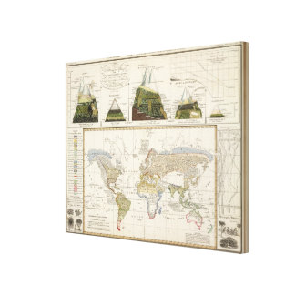 Outline of plant geography gallery wrapped canvas