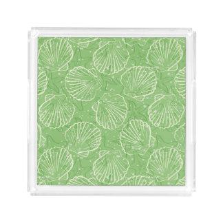 Outline seashells acrylic tray