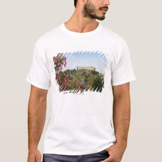 Outside The Valley Of The Temples T-Shirt