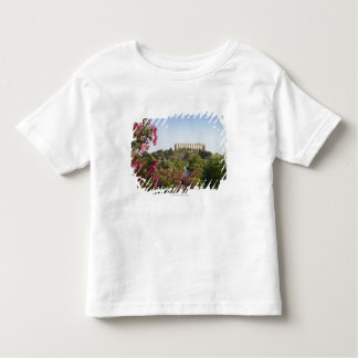 Outside The Valley Of The Temples Toddler T-Shirt