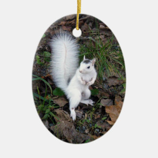 Oval Ornament - Brevard White Squirrel