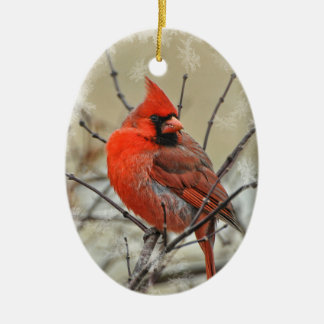 Oval ornament featuring a male cardinal.