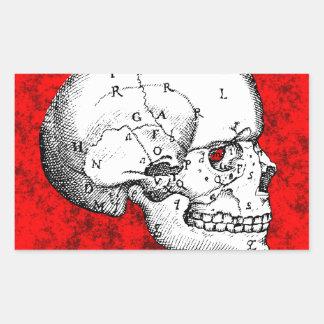 Oval Skull Rectangular Sticker