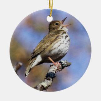 Ovenbird Christmas Ornament