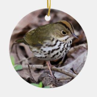 Ovenbird Round Ceramic Decoration