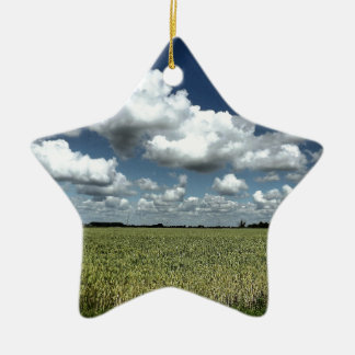 Over the fields we go christmas ornament