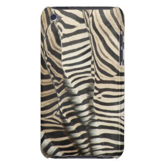 Overhead view of Burchell's Zebra (Equus iPod Touch Cover