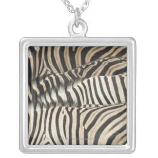 Overhead view of Burchell's Zebra Silver Plated Necklace