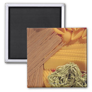 Overhead view of various pasta square magnet