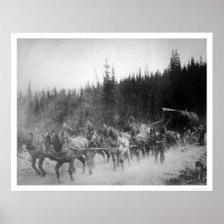 Overland Trail Horses Alaska 1908 Posters