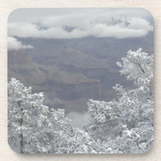 Overlook Grand Canyon National Park Mule Ride Drink Coasters