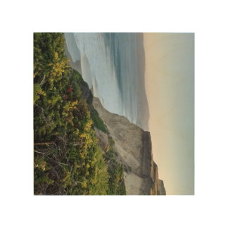 Overlooking Point Reyes National Seashore Wood Wall Decor