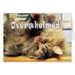 overwhelmed Nellie Greeting Cards