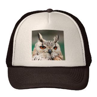 Owl 1 hat