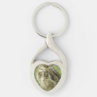owl-29.jpg Silver-Colored twisted heart key ring