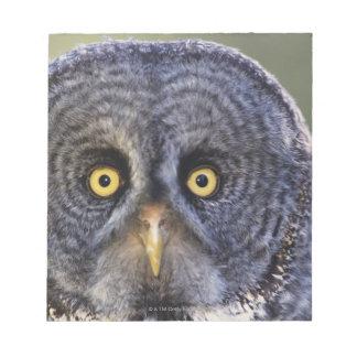 Owl 3 notepad