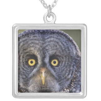 Owl 3 silver plated necklace