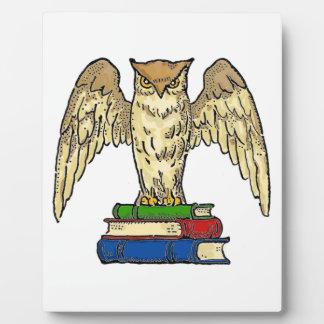 Owl and Books Plaque