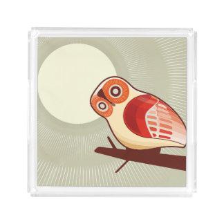 Owl And Moonlight Acrylic Tray