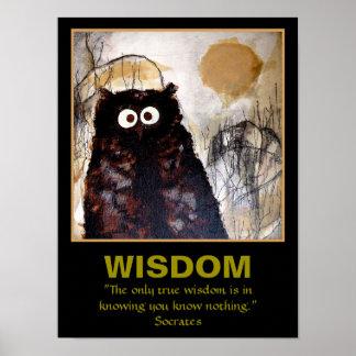 Owl Art Wisdom Poster