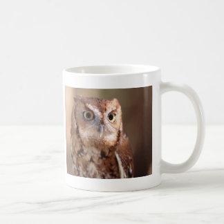 owl basic white mug