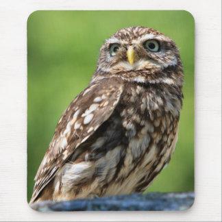 Owl beautiful photo mousemat mousepad