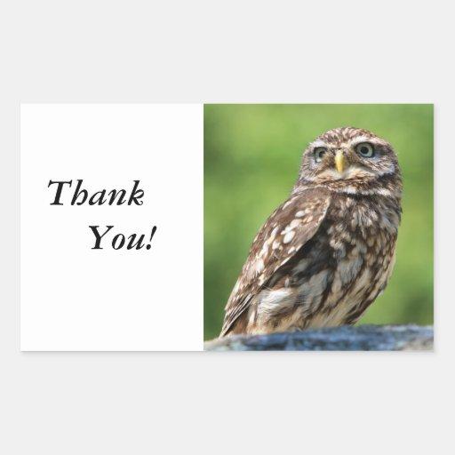 Owl beautiful photo thank you stickers