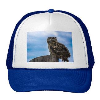 Owl Bird Feathers Animal Nature Destiny Peace Love Cap