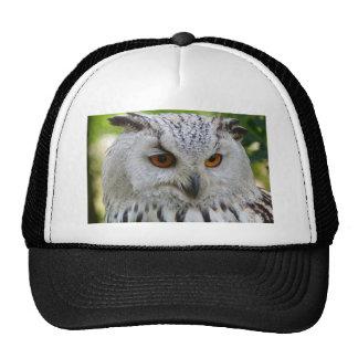 Owl Bird Feathers Destiny Gifts Cap