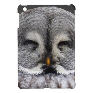 Owl Birds Feathers Party Shower Teacher Class Art iPad Mini Cover