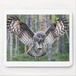 Owl Birds Feathers Party Shower Teacher Class Art Mousepads