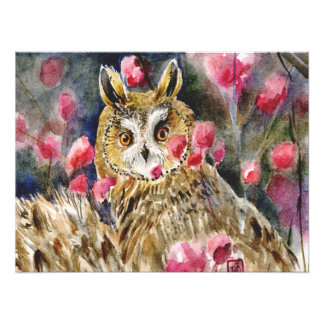 Owl blossom photo print