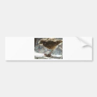 owl bumper stickers